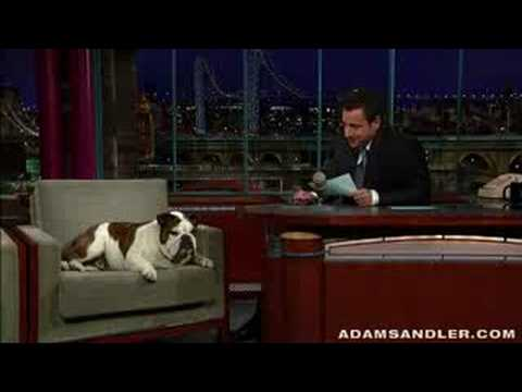 Adam Sandler hosts the Letterman show