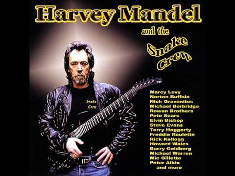 Harvey Mandel and the Snake Crew - Baby Batter II
