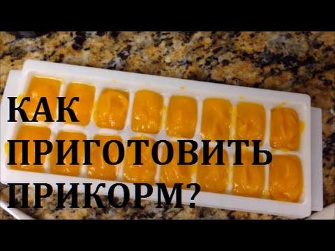Как варить прикорм из тыквы ребенку?