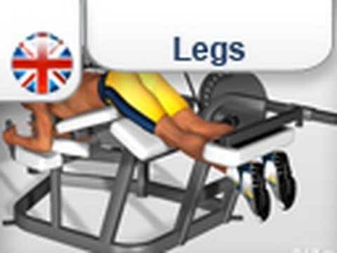 Hamstring exercises: Leg Curl Machine Exercise Image 1