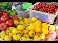 Fresh Produce at the Union Sq Greenmarket - April 11 2014