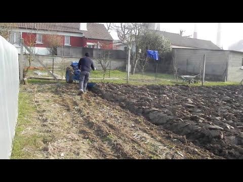 labour printemps 2011  2