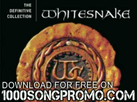 whitesnake - Walking In The Shadow Of The  - The Definitive