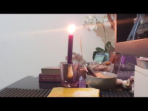 🦉Tarot com Astrologia dia 23.04.18 🦉 Lua Crescente em Leão thumbnail