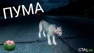 Пума - Лофофора - GTA 5