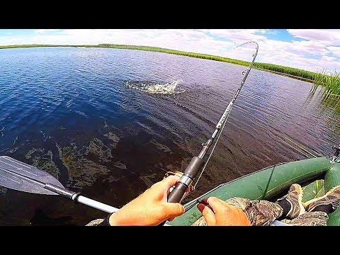 Рыбалка на щуку и окуня в камышах. Разведка по щучьим местам.  Вело-водный поход.