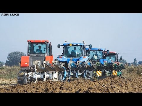New Holland | Scaip Warrior | McCornick | Landini | Aratura all'IIS Calvi | Plowing