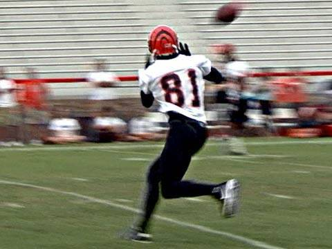Terrell Owens' First Bengals Practice Video