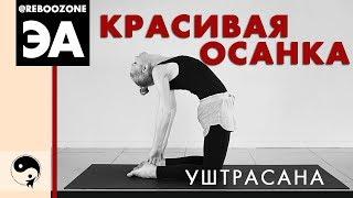 ЙОГА ДЛЯ ПОЗВОНОЧНИКА. Упражнения для правильной осанки. Упражнения для укрепления спины.