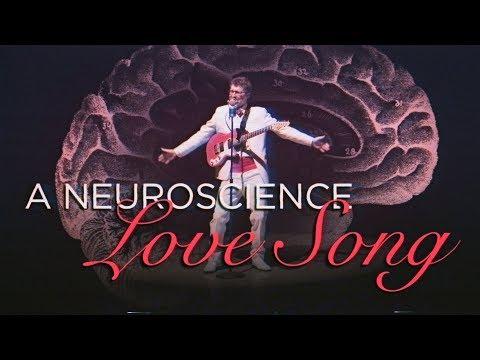 A Neuroscience Love Song ❤️