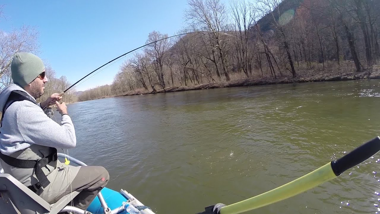 Fly fishing the north branch of the potomac river for Potomac river fishing