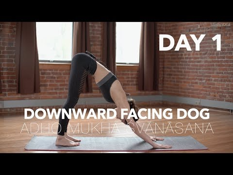 How to do Downward Dog | Yoga Tutorial Day 1 | 30 Poses 30 Days