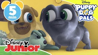 Puppy Dog Pals | Top 5: Bingo And Rolly Save The Day 🐶 | Disney Junior UK