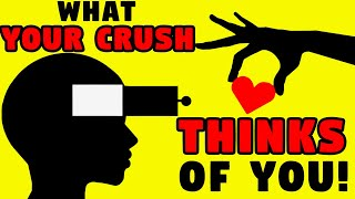 WHAT DOES YOUR CRUSH THINK OF YOU? Love Personality Test   Mister Test