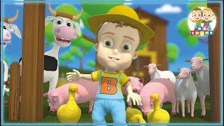 Old MacDonald had a Farm   Nursery Rhymes for Kids Songs