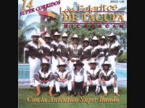 Los Pajaritos de Tacupa Michoacan-Amigo Mesero