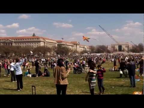 The Cherry Blossom Kite Festival 2013 - Washington DC - 3302013...