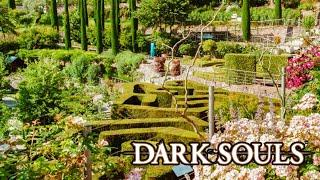 Dark Souls Remasterd #060 - Der königliche Garten [BLIND] [KOOP] [TWITCH]
