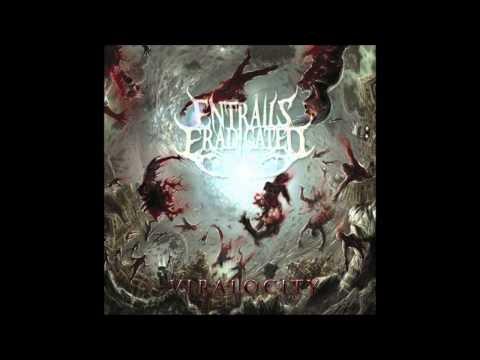 Entrails Eradicated - Collapsible Continuum