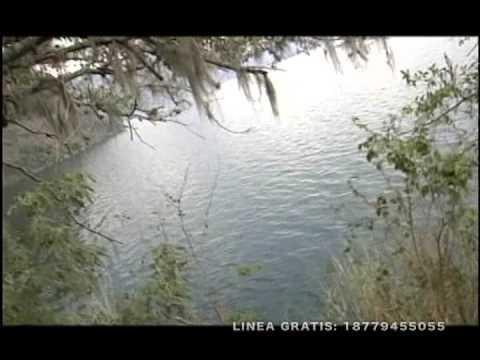 Miles De Penas - Estela Vicente video
