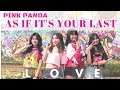 BLACKPINK - '마지막처럼 (AS IF IT'S YOUR LAST) COVER BY PINK PANDA