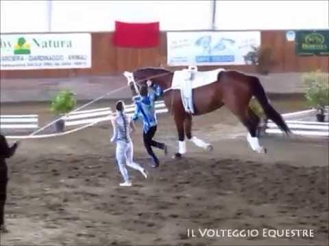 CVI Portogruaro 2015 - Volteggio - Lindner/Wacha - Austria