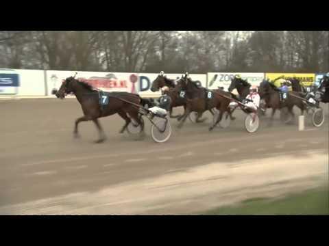 Vidéo de la course PMU PRIX OMRIN.NL
