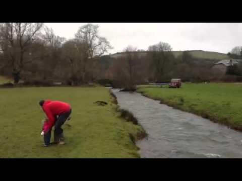 大ジャンプ!目的物を追いかけて川を飛び越える犬