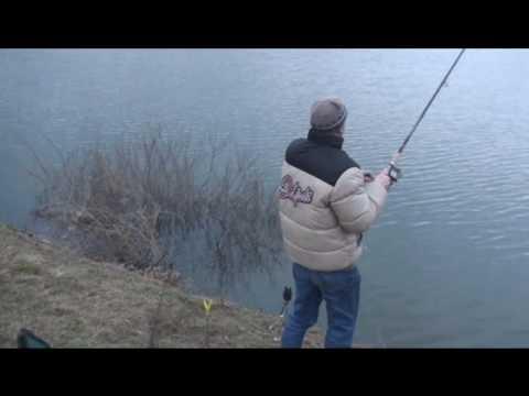 рыбалка в германии на эльбе