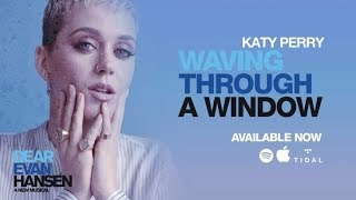 Katy Perry Waving Through A Window