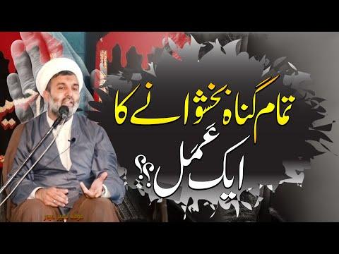Tamam Gunah Bakhshwany Ka Amal.. | Maulana Naseer Haider | 4K
