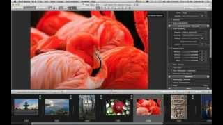 [Webinar] What's new in DxO Optics Pro 8 ?
