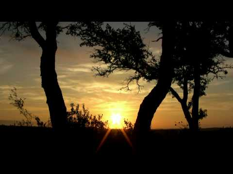 """Sunrise with Song Birds""  15min Sunrise w/o Music"