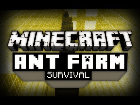 Ant Farm Survival - Ep. 4 - Searching for...Water?