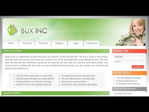 O BUX INC Paga ou não paga?