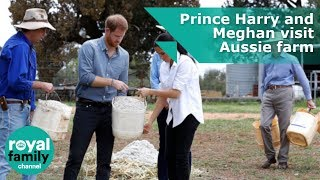 Prince Harry and Meghan feed cows at drought-hit Aussie farm