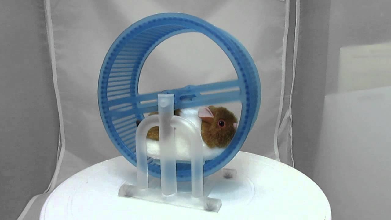 Hamster Wheel Power Hamster Wheel Runner Battery