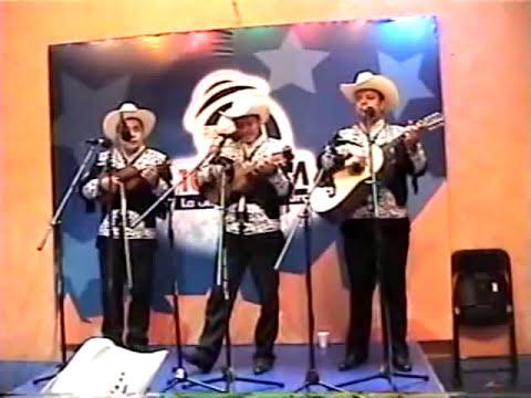 Trio Aire Huasteco - La Xochipitzahuatl