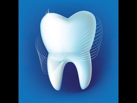 Как вырастить новые зубы? Реальные истории регенерации зубов