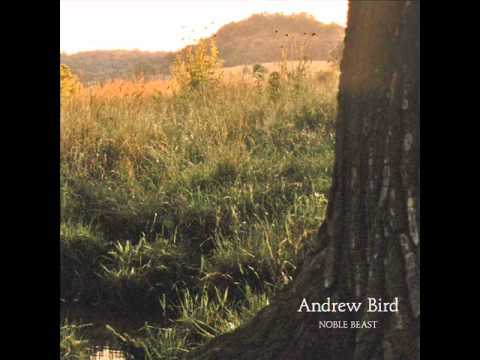 Andrew Bird - Masterswarm