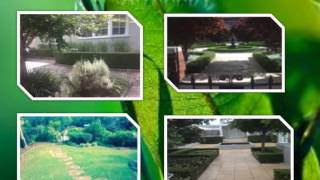 Top Quality Gardening Services in St Leonards