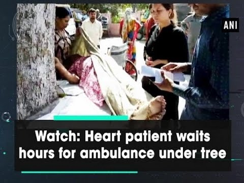 Watch: Heart Patient Waits Hours For Ambulance Under Tree - Uttar Pradesh News