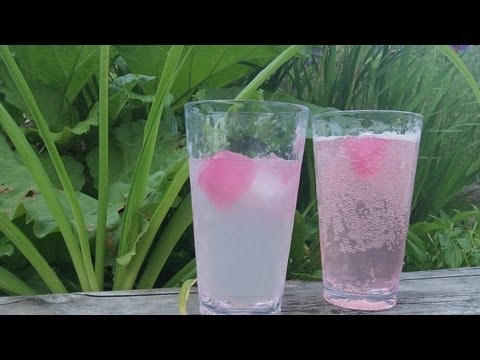 Rhubarb Juice Recipe - delicious easy summer drink - sugar free - paleo primal