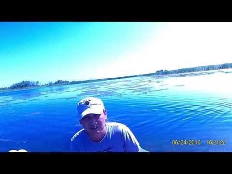 ловля южного казахстан
