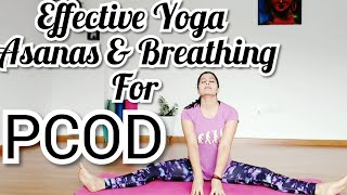 Effective Yoga Asanas & Breathing Sequence for PCOD | Yoga healing for overcoming PCOS & infertility