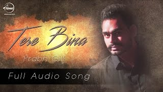 download lagu Tere Bina  Full   Prabh Gill  gratis