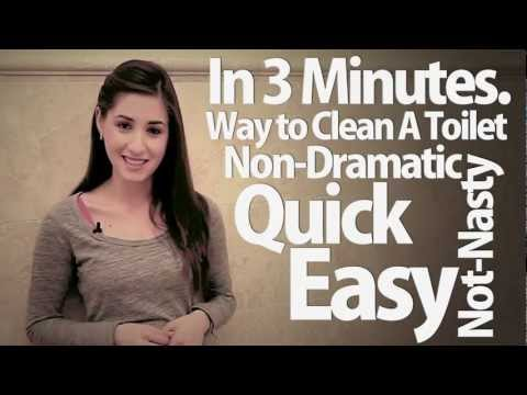 How To Clean A Toilet in 3 Minutes!