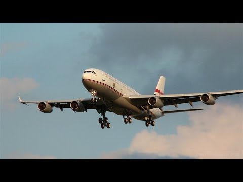 Egypt Government Airbus A340 (SU-GGG) landing at Ferihegy