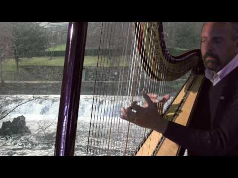 Un canto a Galicia. Daniel Jordán (arpa)