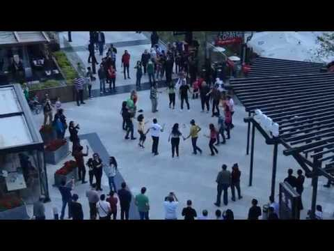 International Rueda De Casino Flashmob (Cairo, Egypt) 2014
